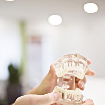 Zahnarztpraxis Dr. Muck